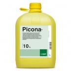 Picona